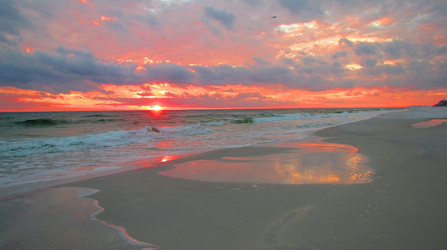 Water Photograph - Sunset On The Gulf by Denise   Hoff