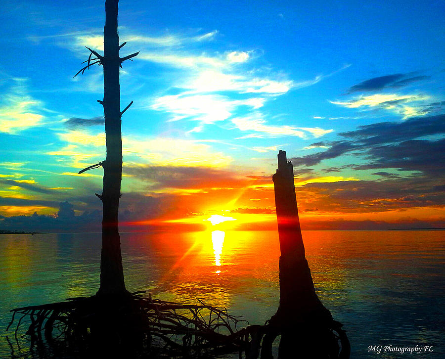 Sunset Photograph - Sunset On The Island by Marty Gayler