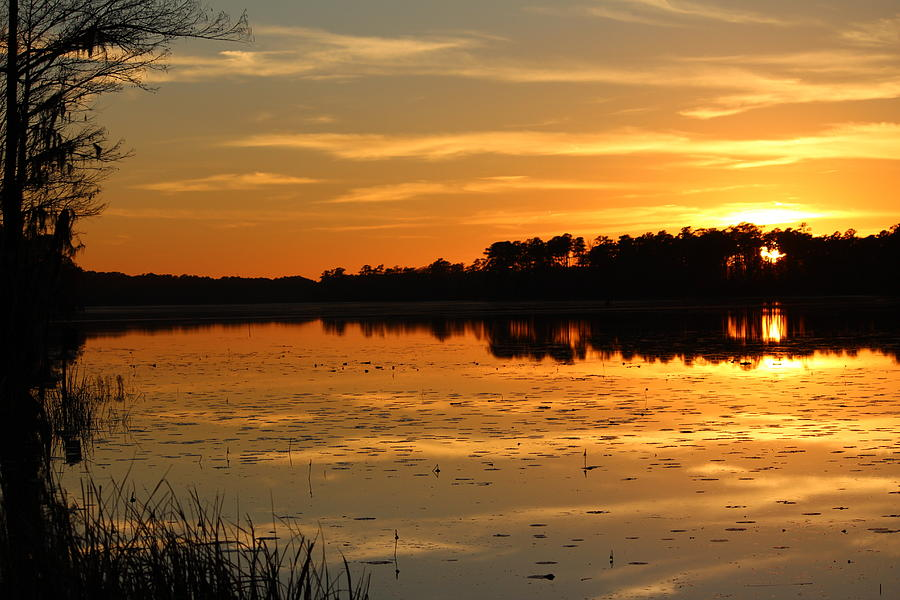 Sunset Photograph - Sunset On The Lake by Cynthia Guinn