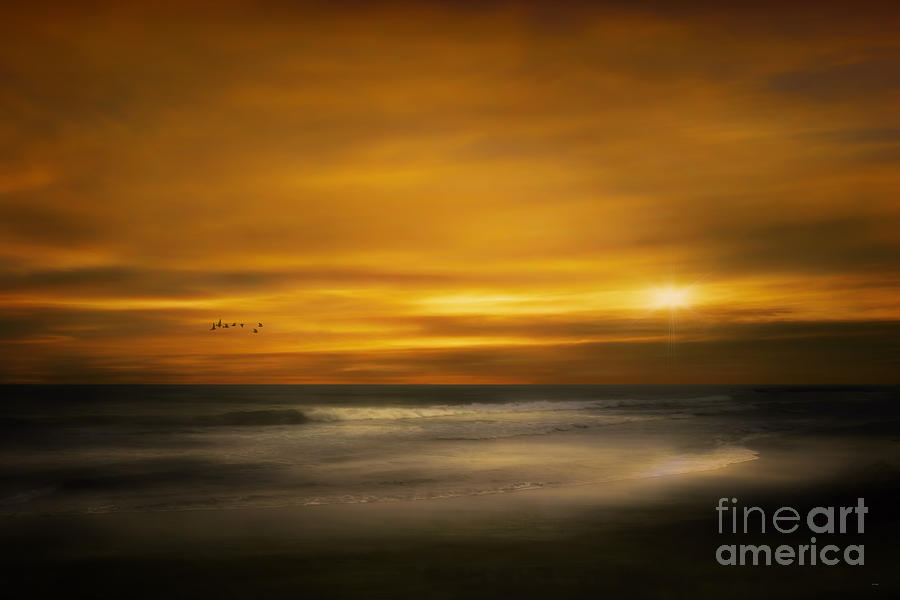 Summer Photograph - Sunset On The Surf by Tom York Images