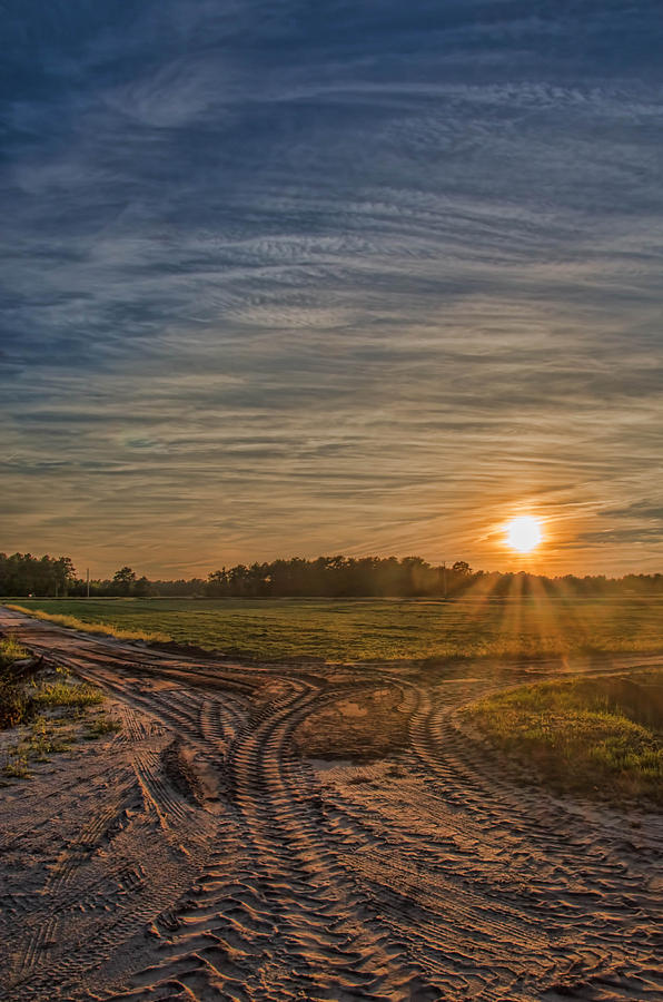 Sunset Photograph - Sunset Over Cranberry Bogs by Beth Sawickie
