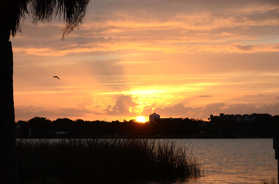 Landscape Photograph - Sunset Over Lake Semniole by Julie Cameron