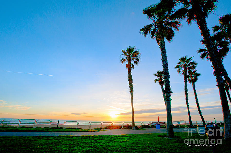 Palm Trees Photograph - Sunset Over Santa Barbara by Artist and Photographer Laura Wrede