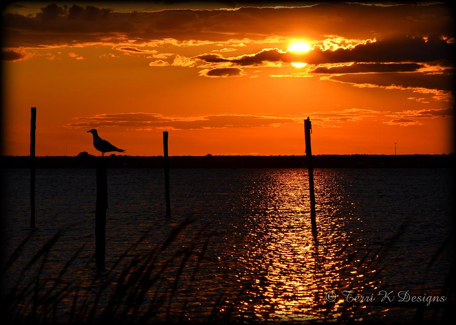 Sunset Photograph - Sunset Over The Bay by Terri K Designs