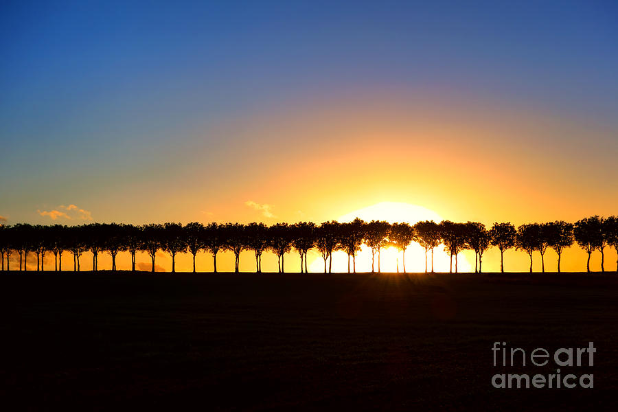 France Photograph - Sunset Over Tree Lined Road by Olivier Le Queinec