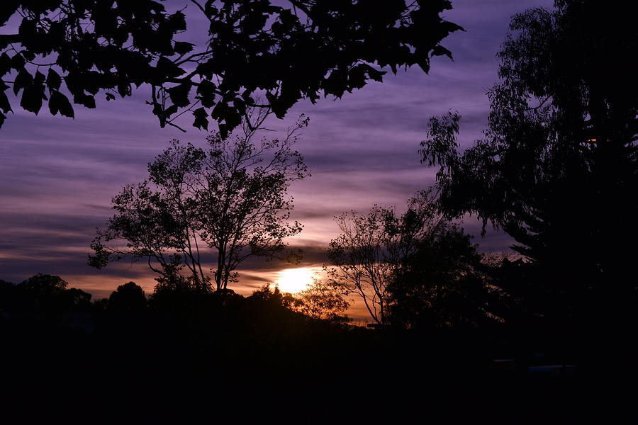Sun Photograph - Sunset Purple Sky by Saifon Anaya