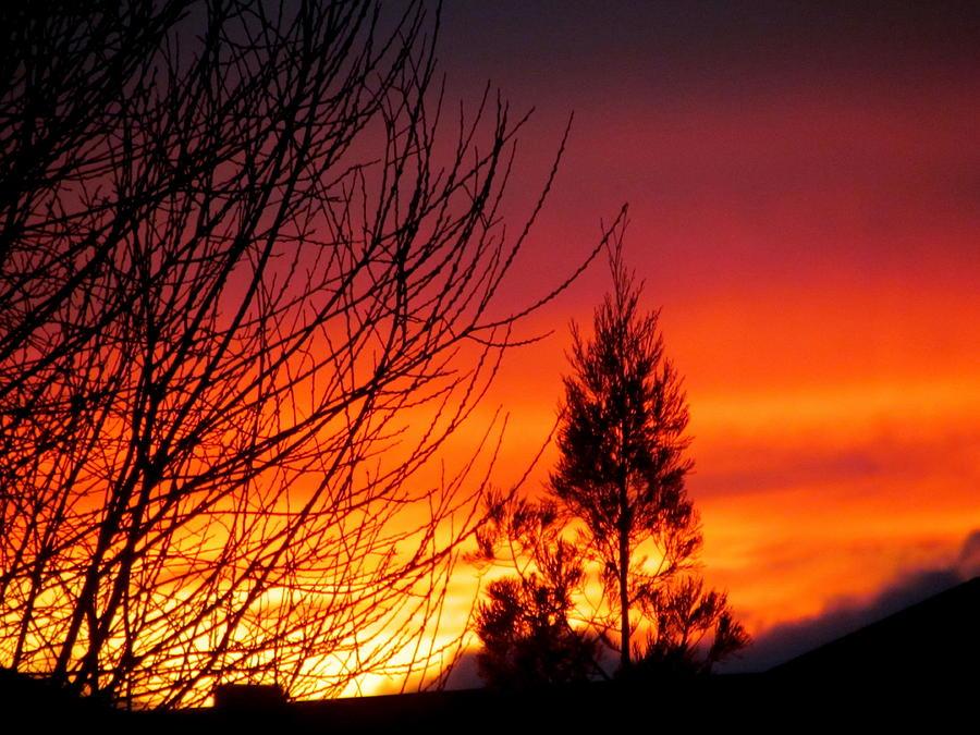 Sunset Photograph - Sunset Sky . by Joyce Woodhouse