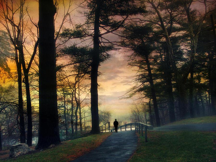 Landscape Photograph - Sunset Solitude by Jessica Jenney