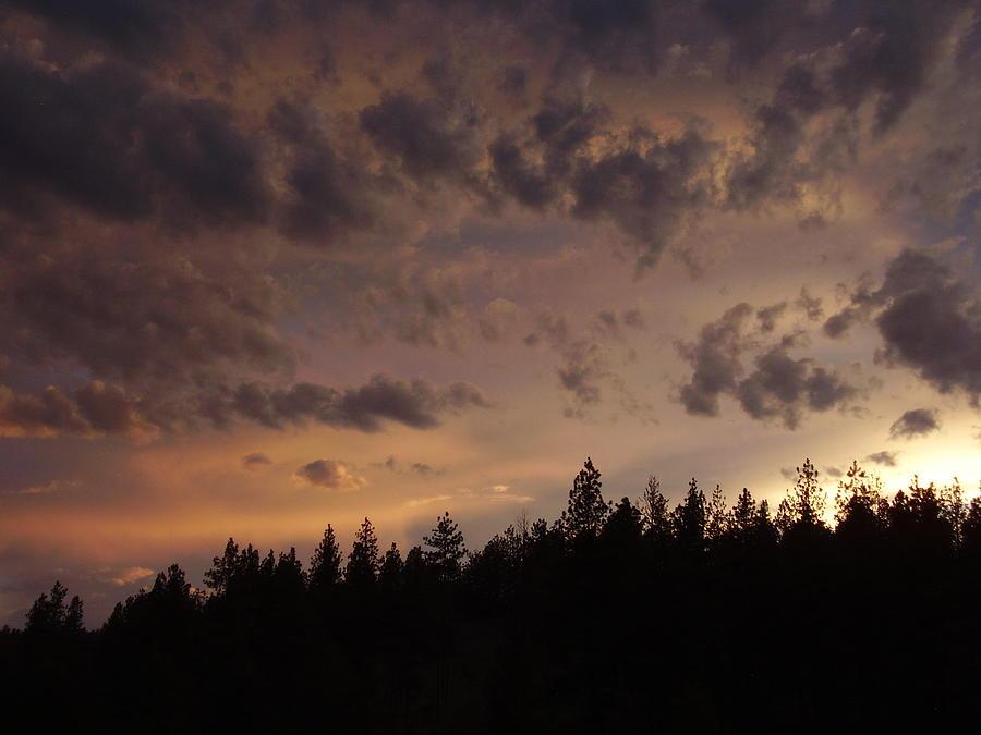 Sunset Photograph - Sunset by Yvette Pichette