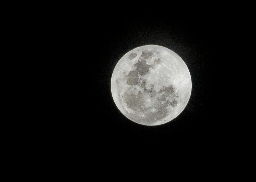 Super Lua Photograph by Texto De Credito Das Fotos