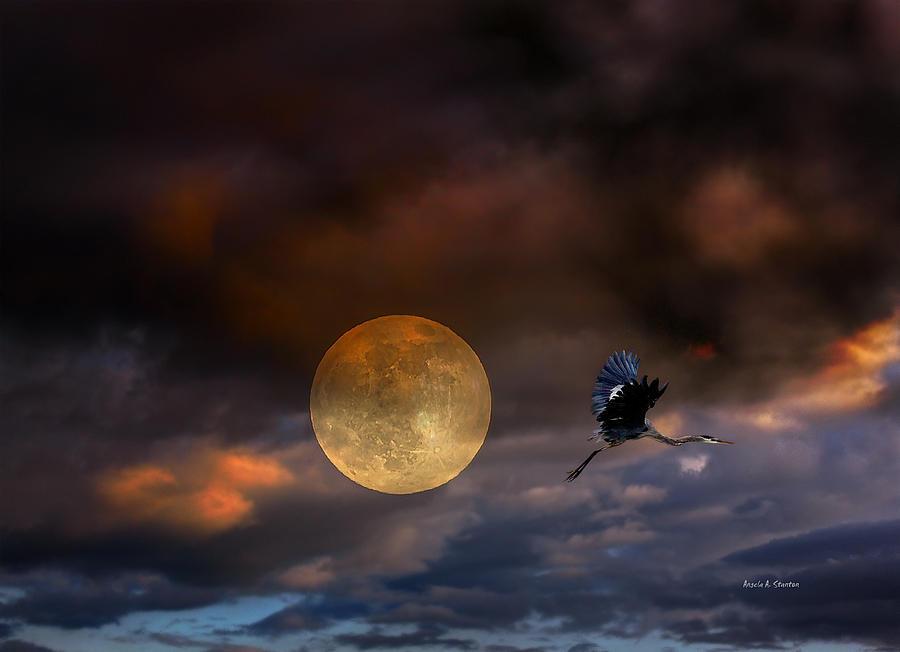 Super Moon Photograph - Super Moon 2013 by Angela A Stanton