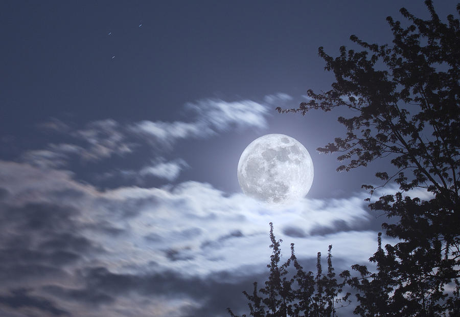 Moon Photograph - Super Moon by Barbara Eckstein
