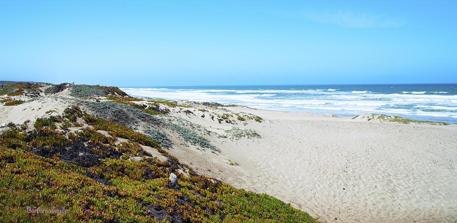 Barbara Snyder Digital Art - Surf Beach Lompoc California 2 by Barbara Snyder