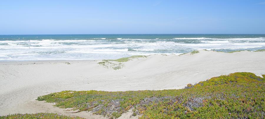 Barbara Snyder Digital Art - Surf Beach Lompoc California 4 by Barbara Snyder