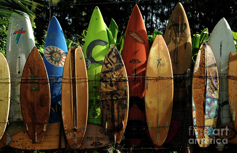 Hawaii Photograph - Surfboard Fence 4 by Bob Christopher