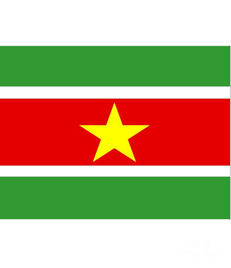 Suriname Digital Art - Suriname Flag by Frederick Holiday