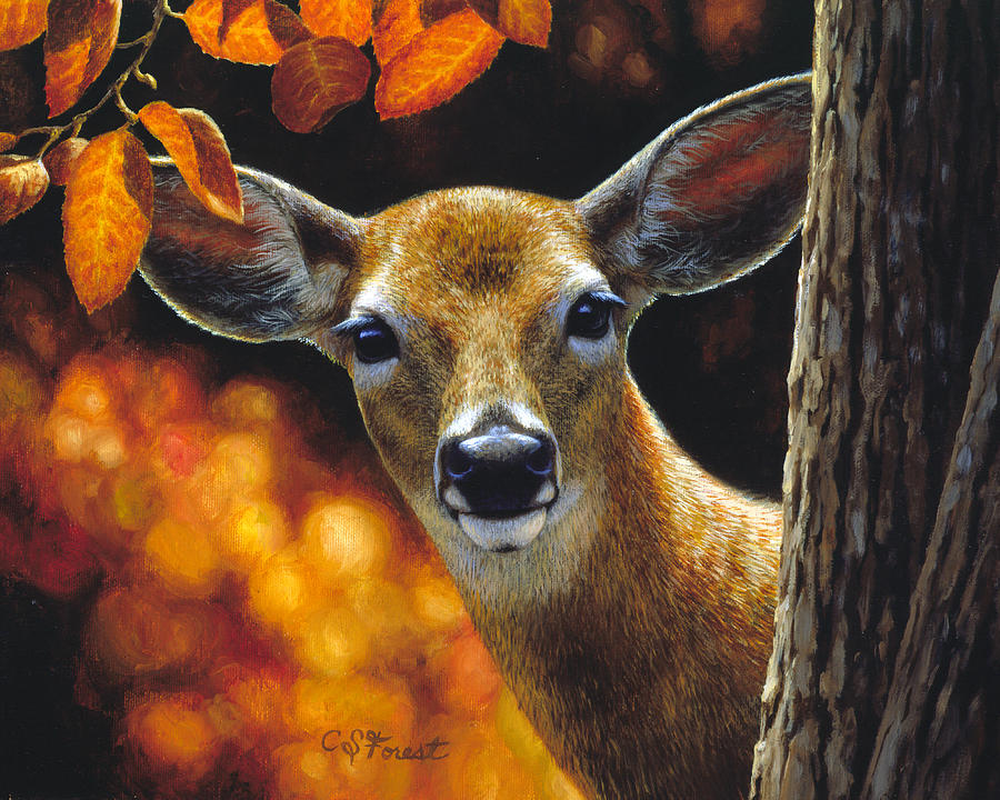 Doe Painting - Whitetail Deer - Surprise by Crista Forest