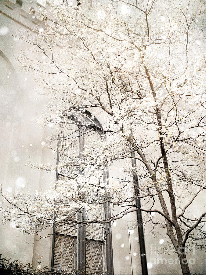 Nature Photography Photograph - Surreal Dreamy Winter White Church Trees by Kathy Fornal