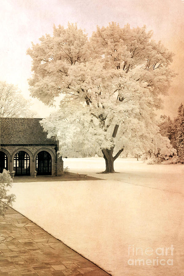 Dreamy Nature Photos Photograph - Surreal Ethereal Infrared Sepia Nature Landscape by Kathy Fornal