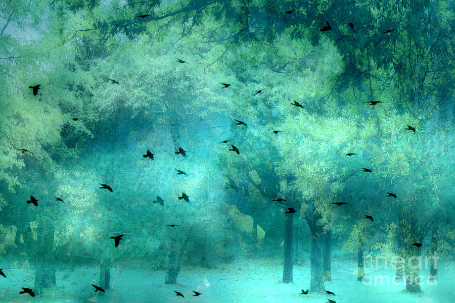 Surreal Fantasy Aqua Teal Woodlands Trees With Ravens Flying Photograph by Kathy Fornal