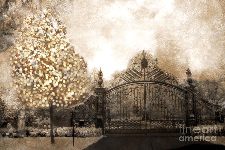 Surreal Fantasy Haunting Gate With Sparkling Tree Photograph by Kathy Fornal