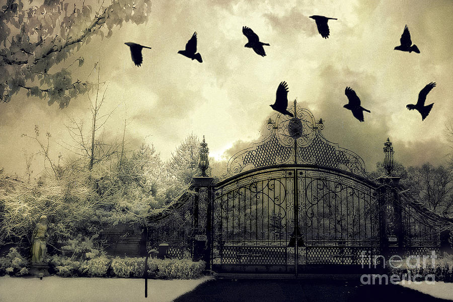 Surreal Gothic Spooky Haunting Gate With Ravens Photograph by Kathy ...