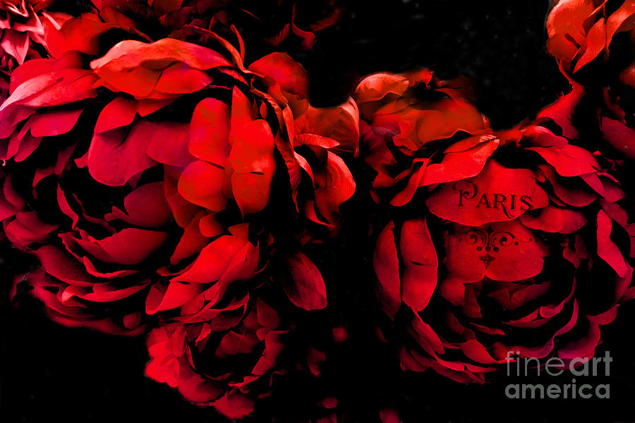 paris red peonies -valentine red and black surreal flower peony art