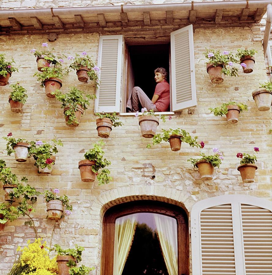 Susanna Agnelli On A Windowsill Photograph by Horst P. Horst