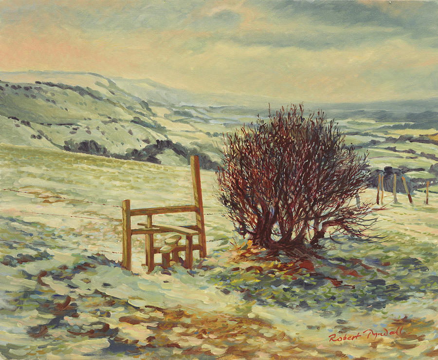 Landscape Photograph - Sussex Stile, Winter, 1996 by Robert Tyndall