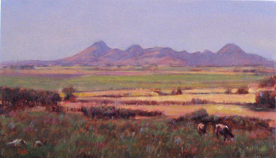 Mountain Painting - Sutter Buttes In Summer Afternoon by Takayuki Harada