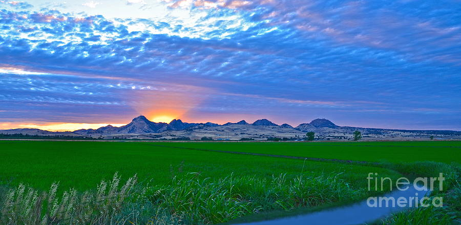 Sutter County Photograph - Sutter Buttes Sunset Ray Burst In The Rice Fields  by Michelle Zearfoss