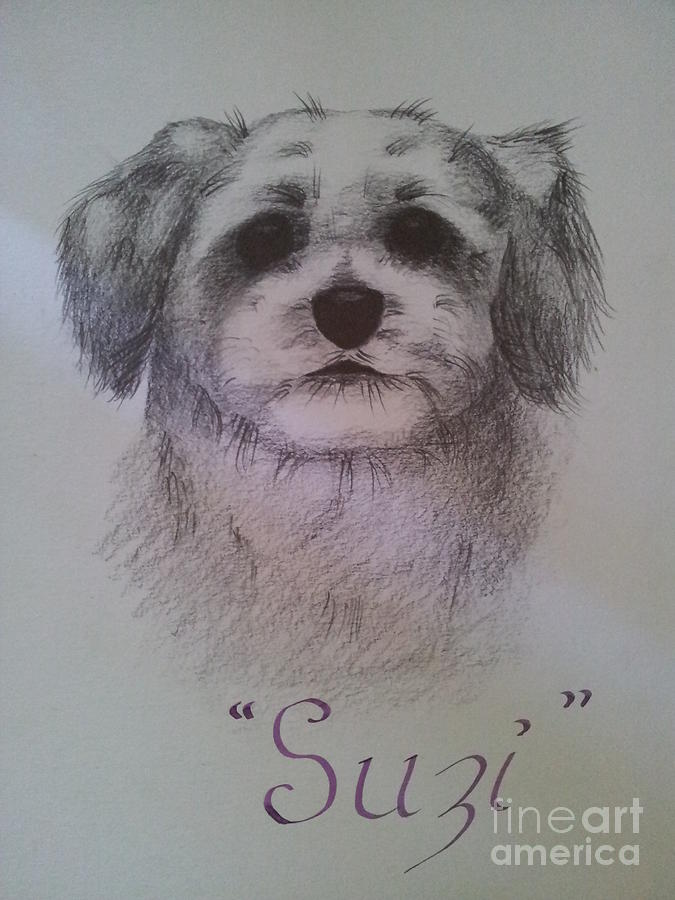 Drawing Painting - Suzi by Debra Piro