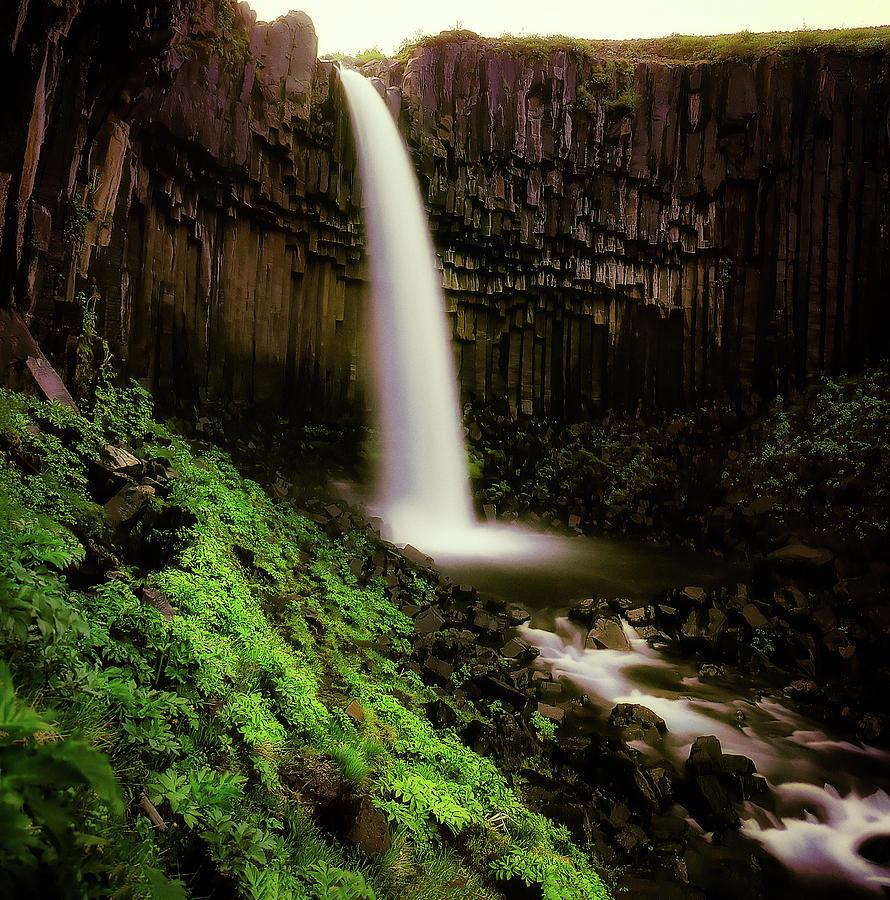 Vertical Photograph - Svartifoss Waterfall, Skaftafell by Panoramic Images