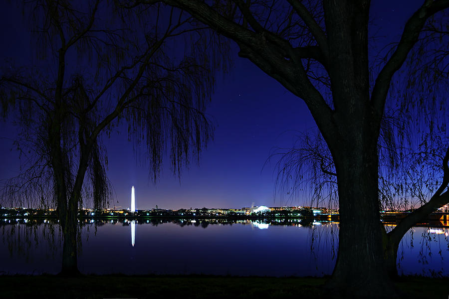 Metro Photograph - Swamp Land No More by Metro DC Photography