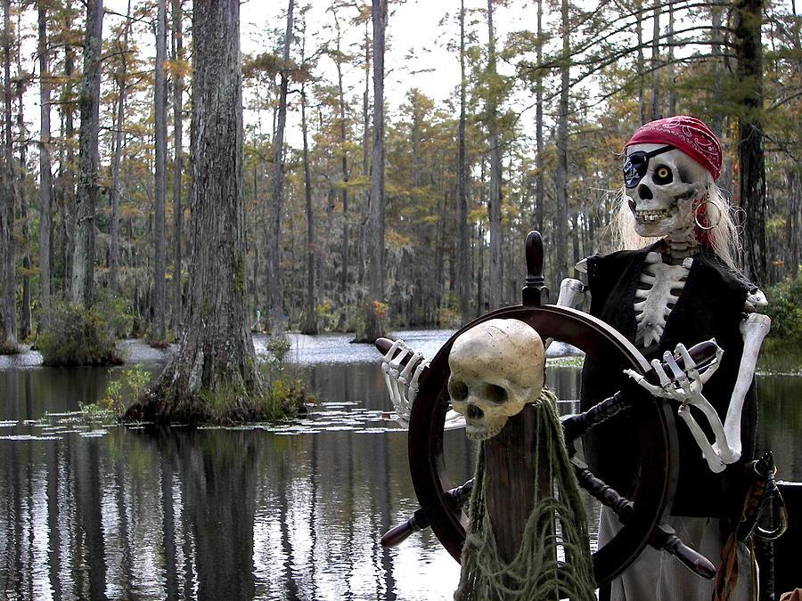 Pirates Photograph - Swamp Pirate by Karen Wiles