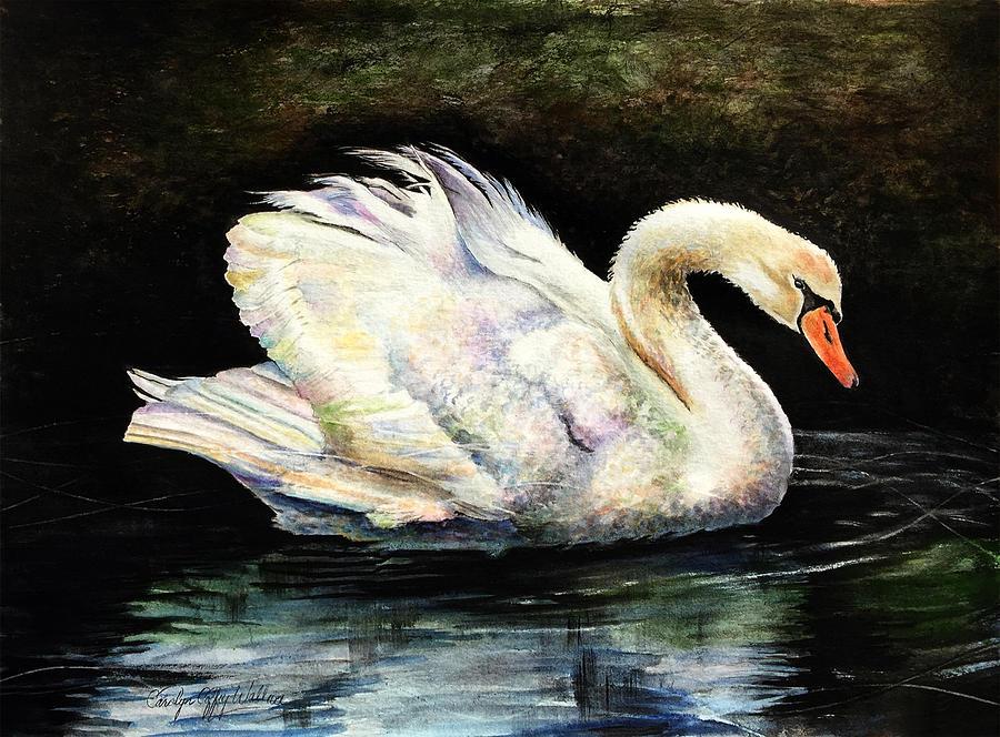 Swan at Middleton Place Charleston South Carolina by Carolyn Coffey Wallace