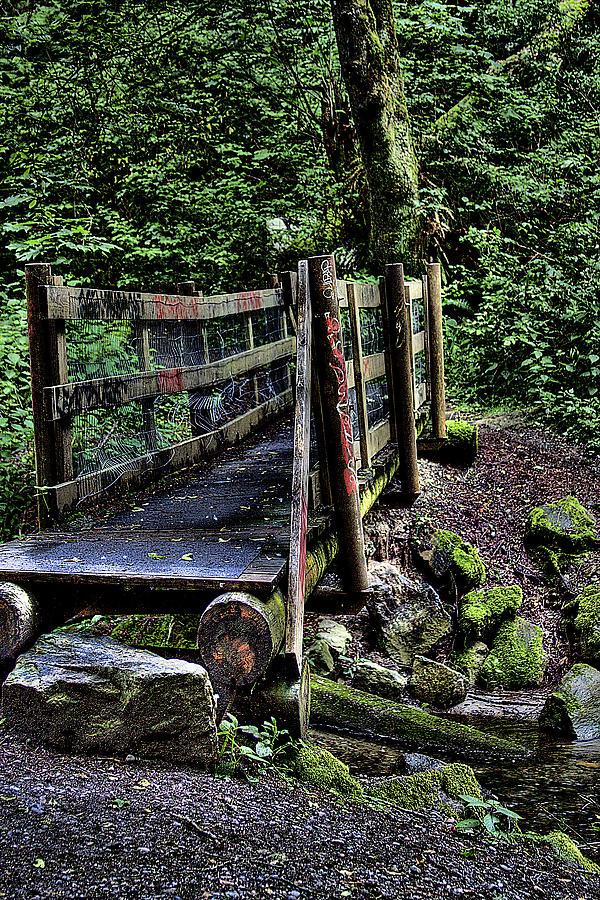 Swan Creek Photograph - Swan Creek Footbridge by David Patterson