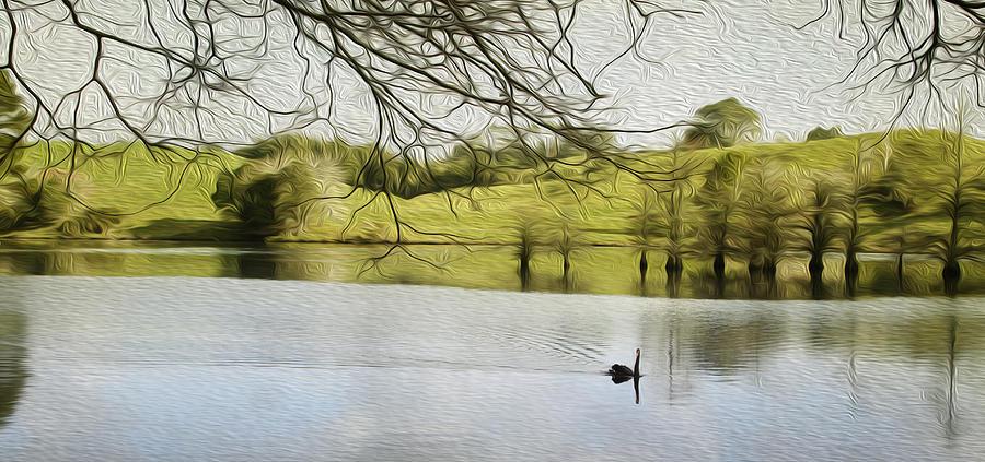 Swan Digital Art - Swan Lake by Les Cunliffe