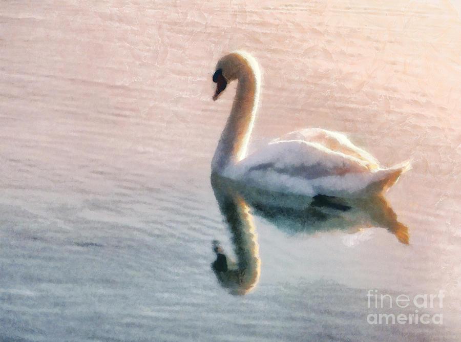 Swan Painting - Swan On Lake by Pixel  Chimp