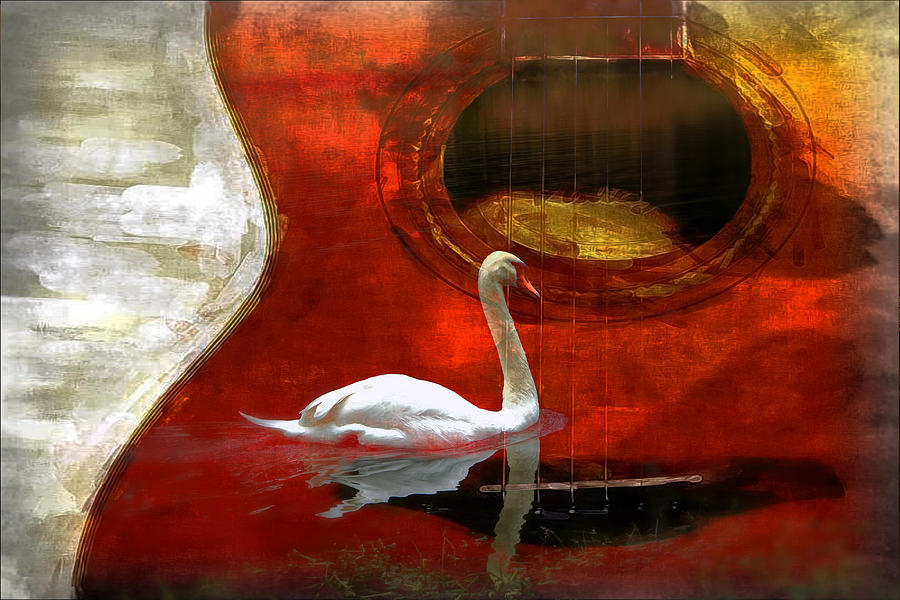 Swan Photograph - Swan Song by Wendy Mogul