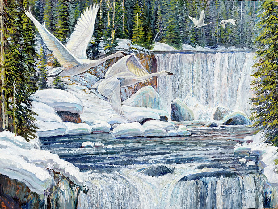 Birds Painting - Swans Over Collonade Falls by Steve Spencer