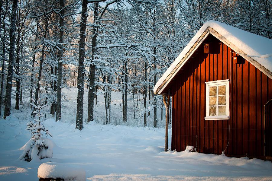Sweden Photograph - Swedish Winter by Robert Hellstrom
