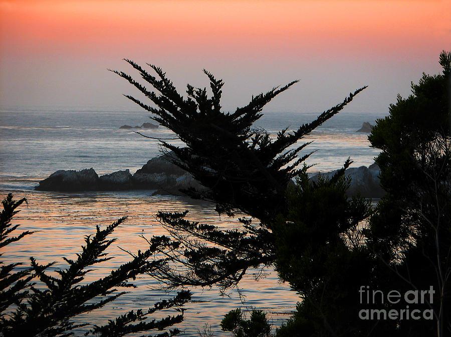 Seascape Photograph - Sweet Dreams by Ellen Cotton