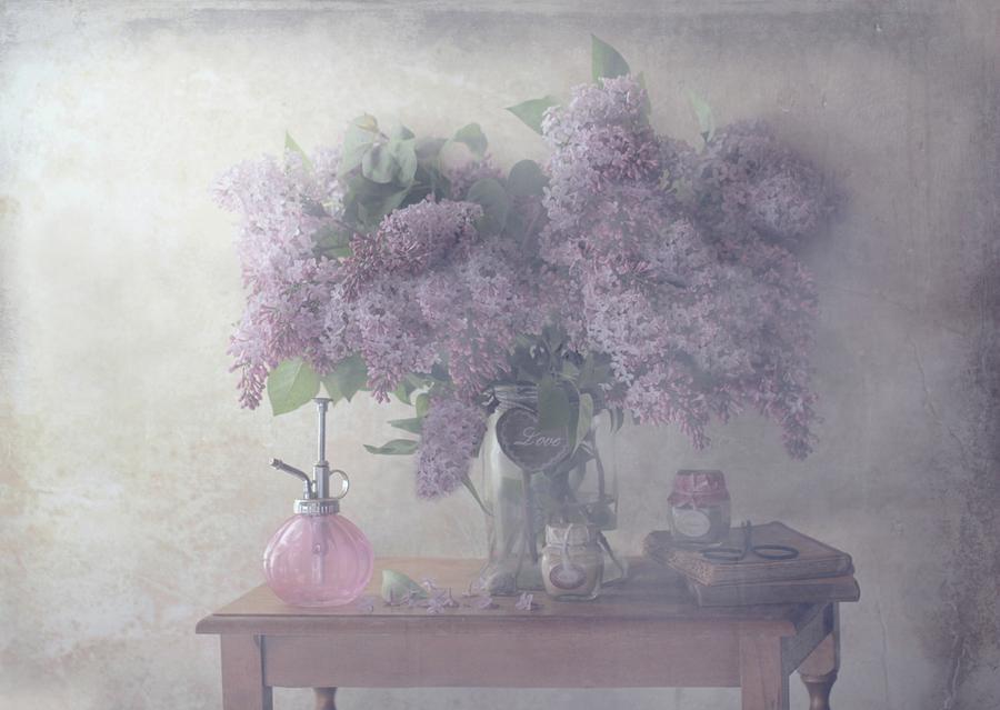 Still Life Photograph - Sweet Lilacs by Delphine Devos