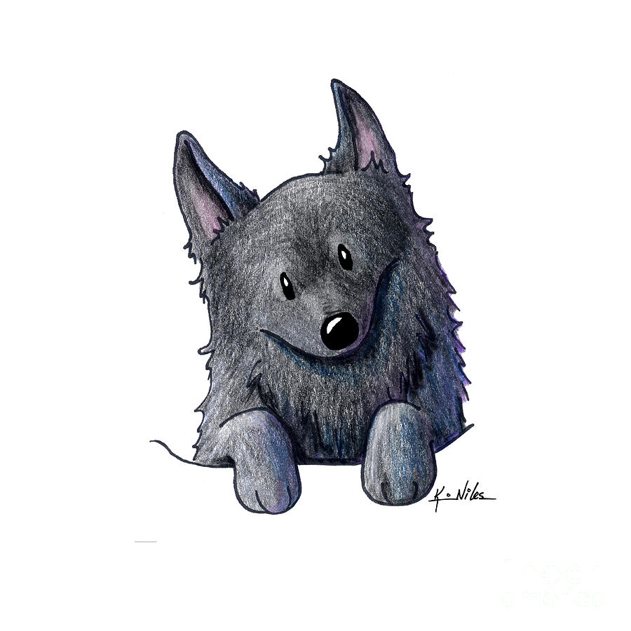 Schipperke Drawings Drawing - Sweet Schipperke by Kim Niles