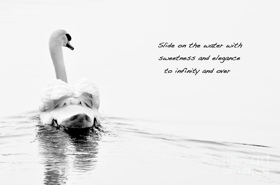 Sweetness and elegance by Simona Ghidini