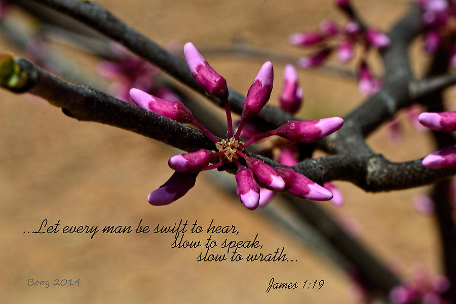 Bible Photograph - Swift To Hear by Larry Bishop
