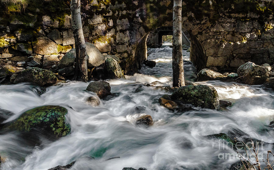 Fast Water Photograph - Swift Water by Mitch Shindelbower