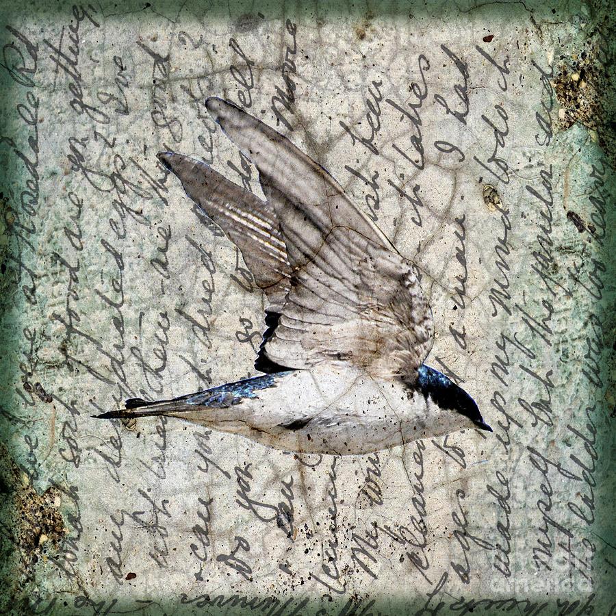 Bird Digital Art - Swift Wings by Judy Wood