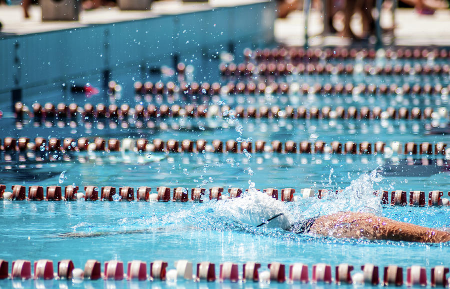 Swimmer In A Sport Pool Photograph by Bosca78